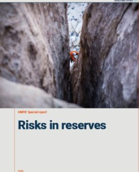 GPI 2019 special report: Risks in reserves