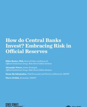 How do central banks invest