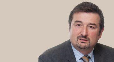 The future of the euro area: Capital market integration