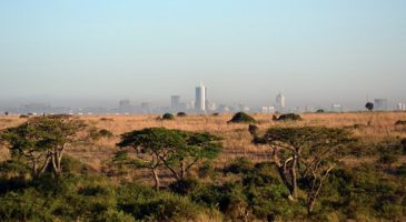 Investment opportunities and challenges in sub-Saharan Africa