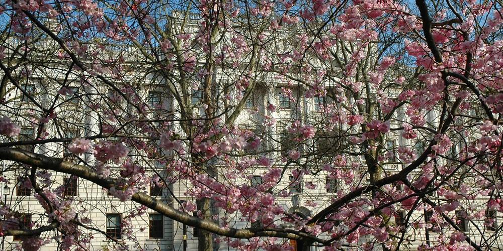 hm treasury spring newweb