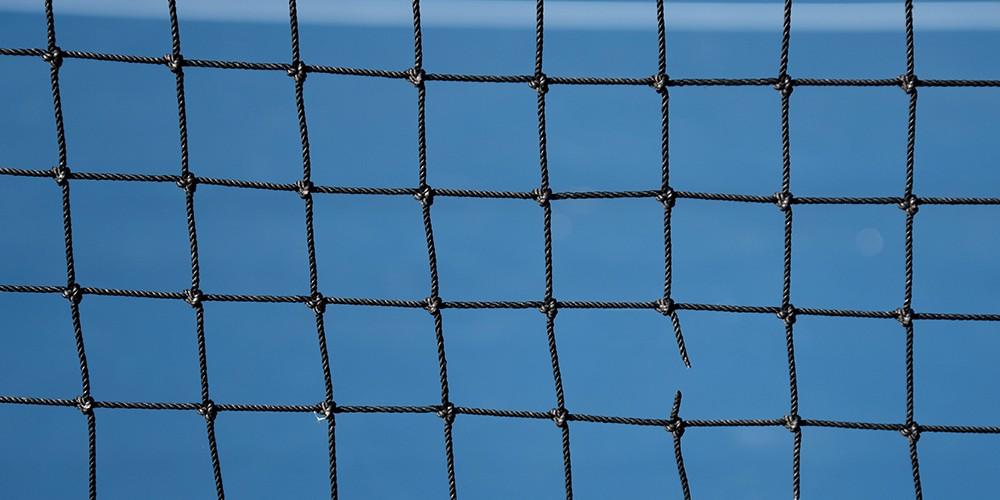 net newweb