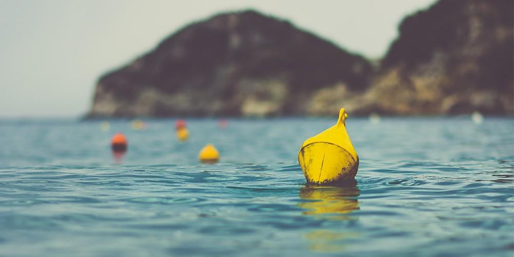 buoy newweb