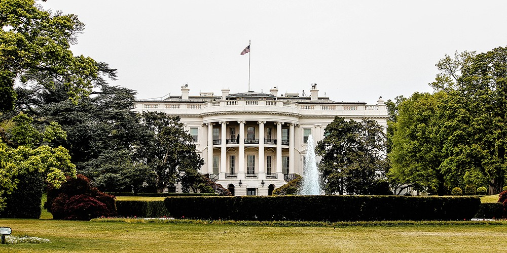 white house newweb