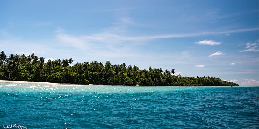 pacific island newweb