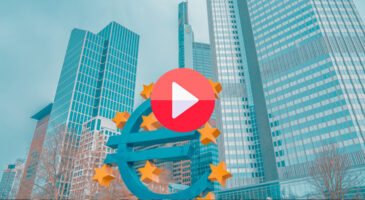 Growing pains: the story of the euro