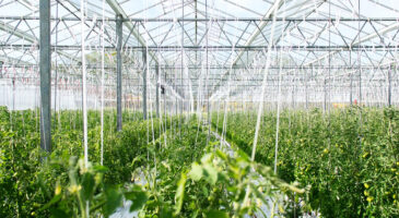 Agritech investment boom