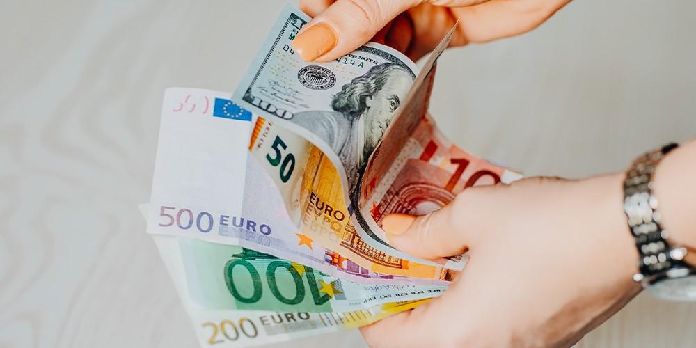 euro replace dollar update