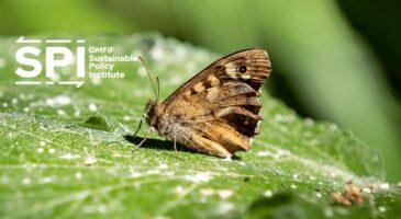 Establishing metrics for biodiversity and ecological transition