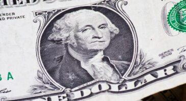 Dollar bears on wrong track