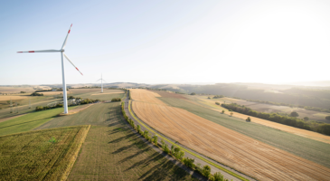 German companies back Brussels climate mitigation policy