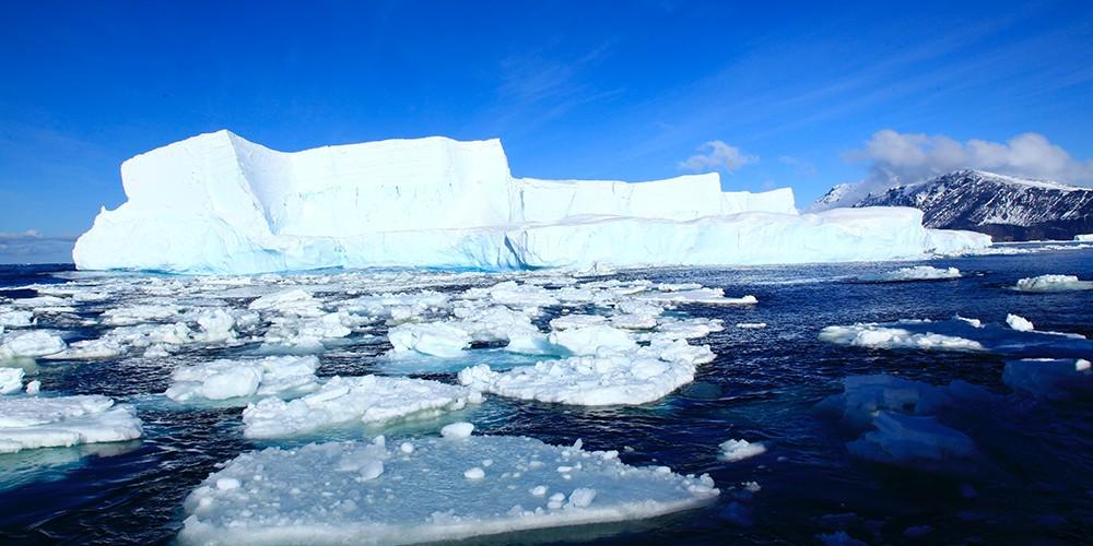 iceberg newweb