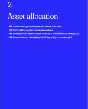 GPI 2021: Asset allocation