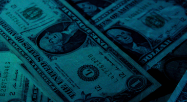 Dollar's global role: extraordinary privilege or burden?