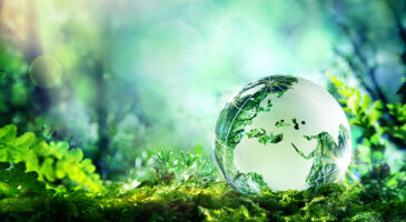 Transparency and disclosures only first step in climate change battle