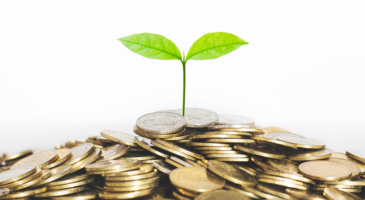 Over half of 'low-carbon' ESG funds are exaggerating claims
